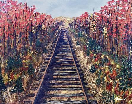 Tracks Remembered by Cynthia Morgan