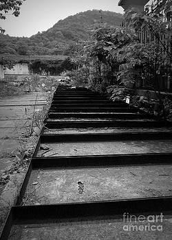Shawna Gibson - Tracks to no where