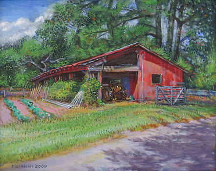 Tractor Barn in Lexington SC by Philip Gianni