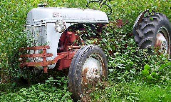 Tractor by Diane Mitchell