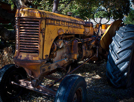 Tractor by Elizabeth Richardson