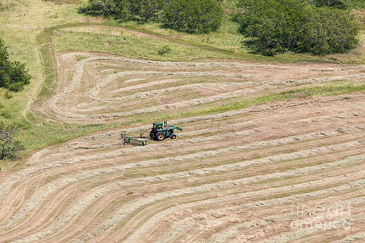 JOHN FERRANTE - Tractor Tracks