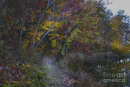 Barbara Bowen - Trail along the Sloppy Floyd Lake