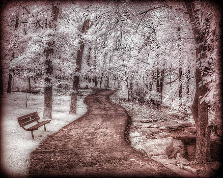 Trail in Infrared by Jay Swisher