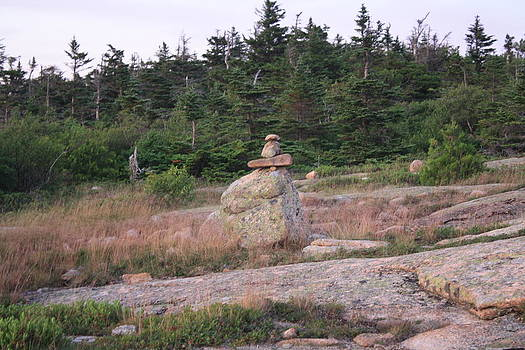 Trail Marker-Cairn by Terry Decker
