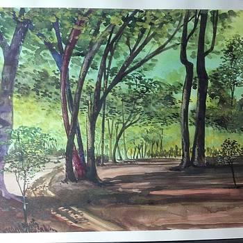 Trail Thru Trees by Dan Olszewski
