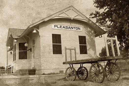 Train Depot - Pleasanton - Nebraska by Andrea Kelley
