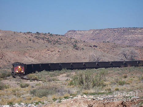 Train in Rattlesnake Gulch by Sherry Vance