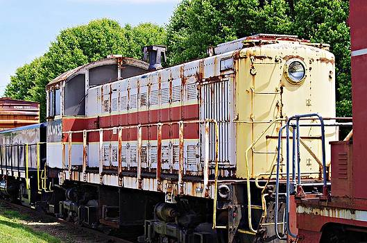 Sharon Popek - Train