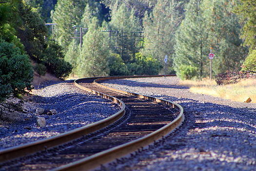 Train Tracks by Peter Kotzbach