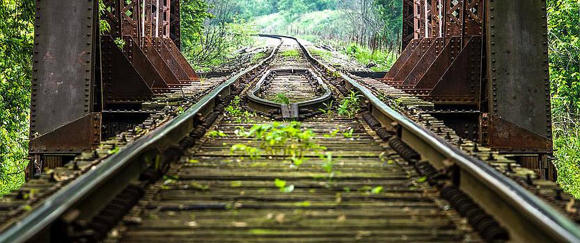 Train Trestle 2 by David Johnson