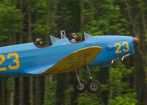 Training Flight by David Nichols