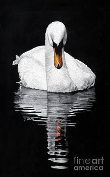Tranquil Reflection by Sheryl Unwin