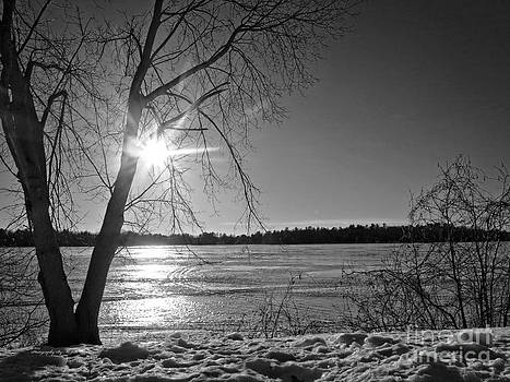 Ms Judi - Tranquil Sunset