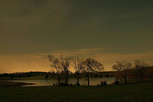 Nina Fosdick - tranquil waters