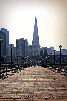 Transamerica Pyramid from the Pier  by Megen McAuliffe