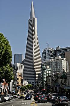 Steven Lapkin - Transamerica Tower