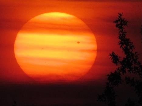 Transit of Venus 2012 by Shannon Story