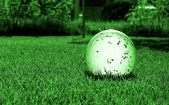 Translucent Ball by Lonnie Paulson