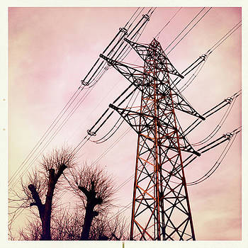Transmission line with bare trees and red sky by Matthias Hauser