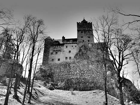 Transylvania - Dracula Castle by Sorin Ghencea