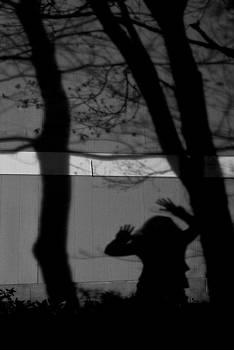 Trapped by Amanda Honeycutt