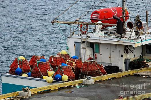 Barbara Griffin - Traps and Buoys Ready for Crab Fishing