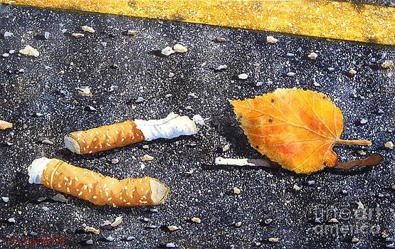 Trash by Marisa Gabetta
