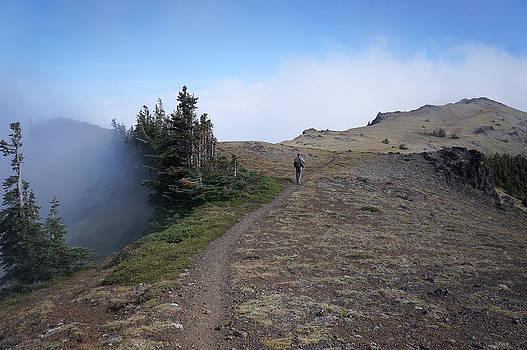 Ronda Broatch - Traveling the Well-Worn Path II