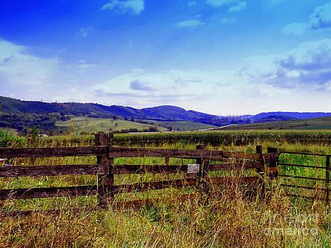 Gena Weiser - Traveling Through the Allegheny Mountains