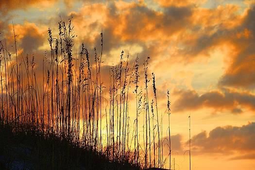 Treasure Island Sunset by Oscar Alvarez Jr