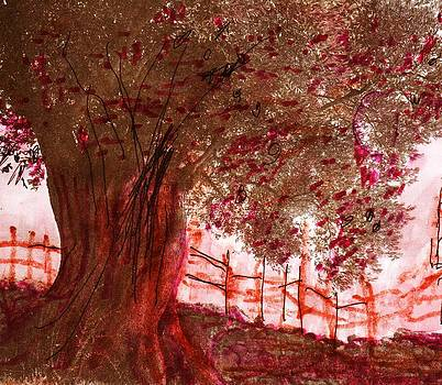 Anne-Elizabeth Whiteway - Tree and Old Fence