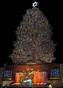 Tree At Rockefeller Center by Patricia Bolgosano