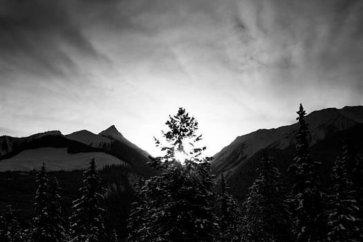 Tree Between the Mountains by Maik Tondeur