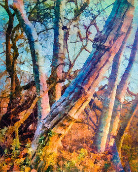 Priya Ghose - Tree Branches In Turquoise Art