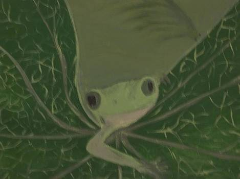 Tree Frog by Michelle Treanor