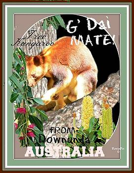 Tree Kangaroo card by Kevin Perandis