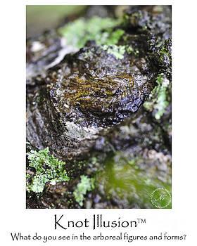 Wayne Nielsen - Tree Knot Illusion - Eye of Green