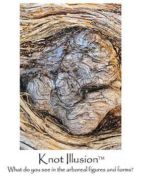 Wayne Nielsen - Tree Knot Illusion - Kittens or Creep