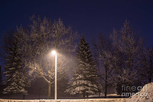 Alanna DPhoto - Winter Street View