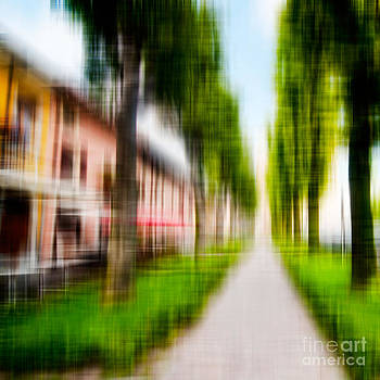 Tree lined sidewalk. by Emilio Lovisa
