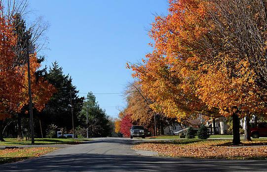 Tree Lined Street by Carolyn Ricks