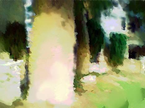 Tree by Mehrdad Sedghi