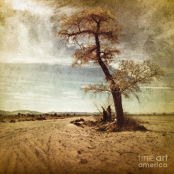 Tree Near The Road by Pam Vick