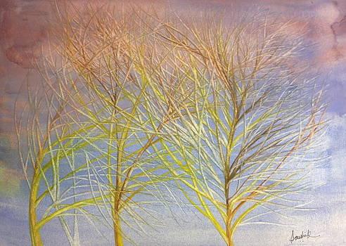 Tree Of Calmness by Ashima Kaushik