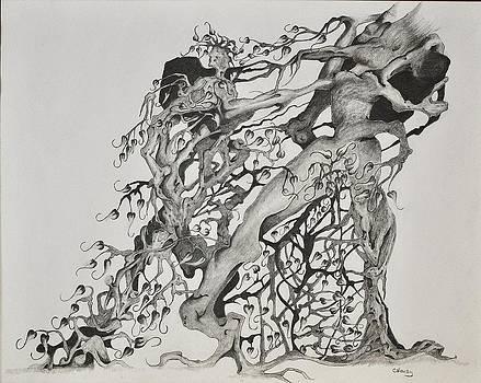 Tree People by Glenn Calloway