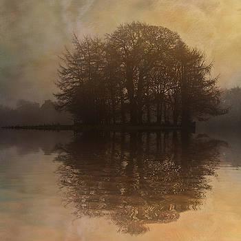 David Pringle - Tree Reflections II