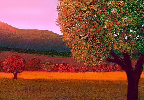 Tree Scene by John Townes