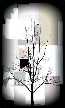 Tree Series  by Paul  Simpson