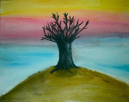 Lee Farley - Tree sunset